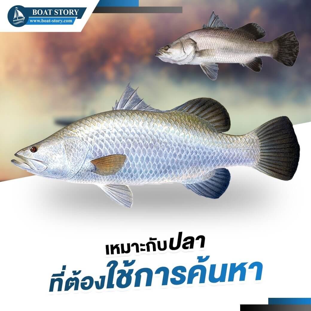 รอกตกปลาฟลาย 03